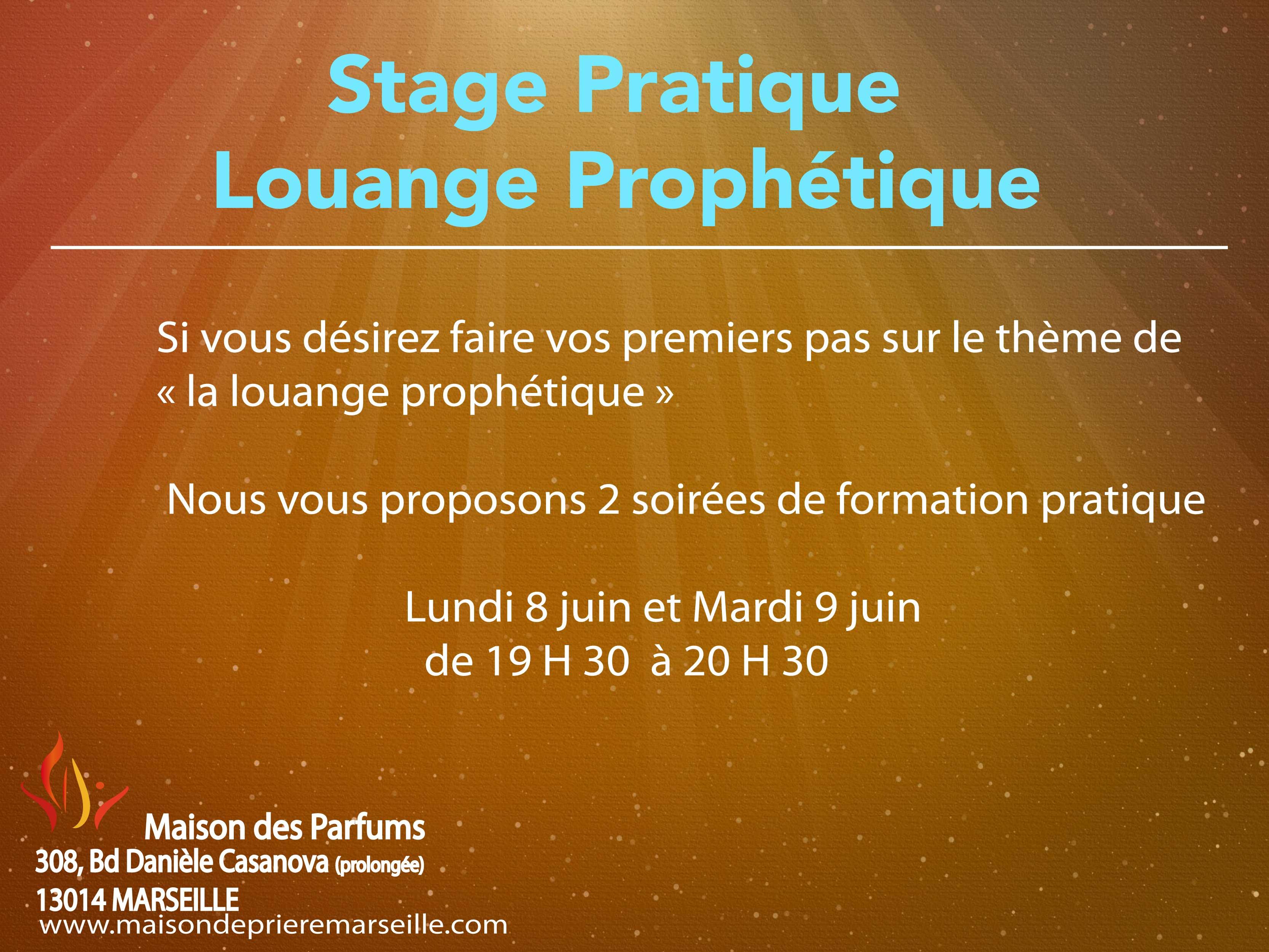 Formation pratique Louange pro